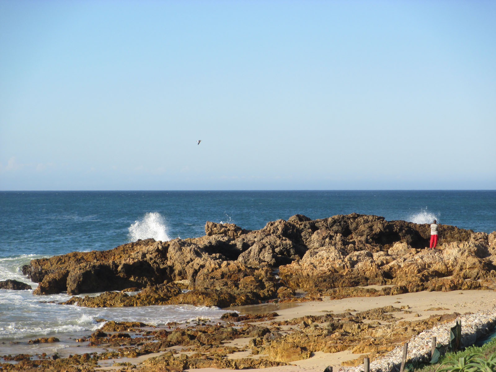 Nahe Port Elisabeth