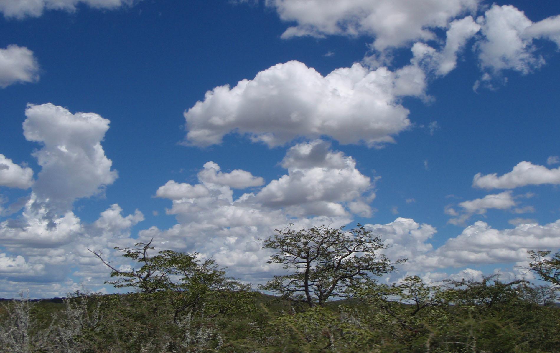 Wolken über der Etoscha