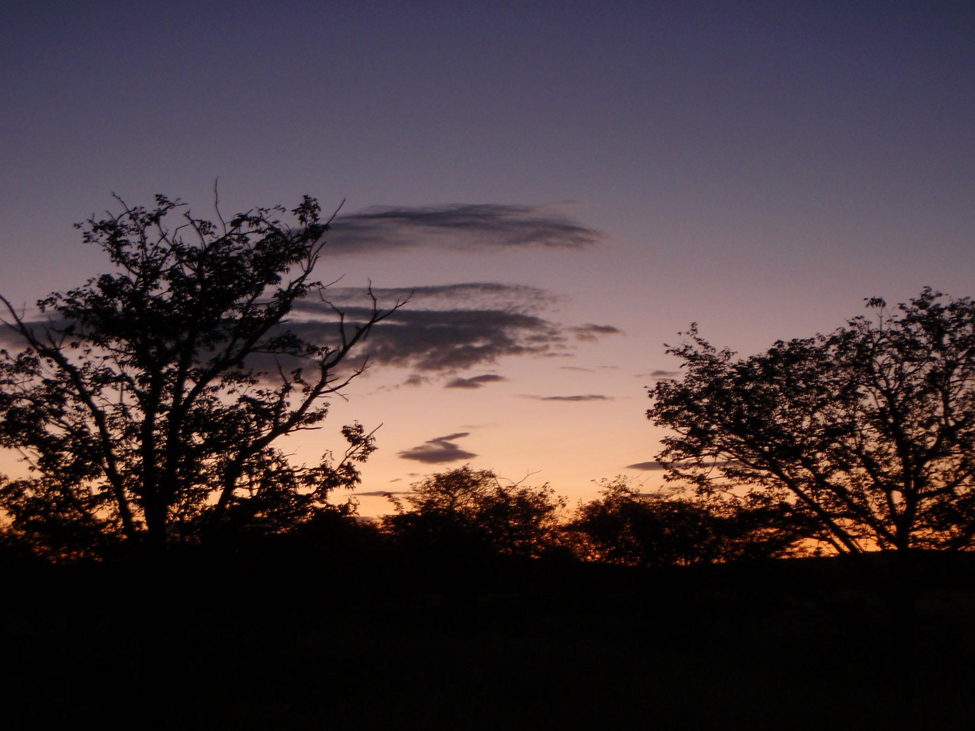 Abend in der Etosha