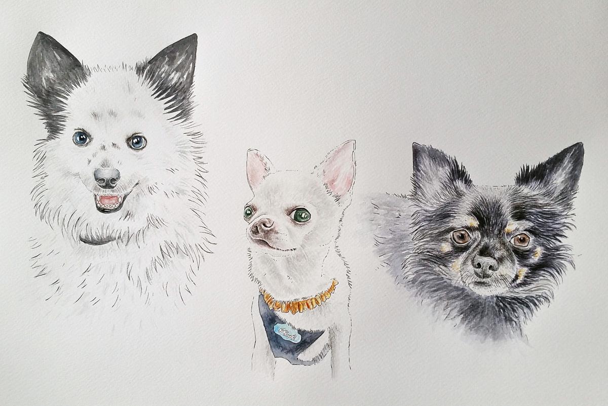 Die drei frechen (Portrait - Zusammenstellung von verschiedenen Fotos)