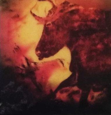 toro, Lichtobjekt, ca. 40 x 40 cm