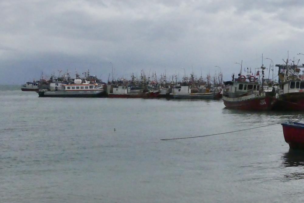 Le port de Puerto Natales