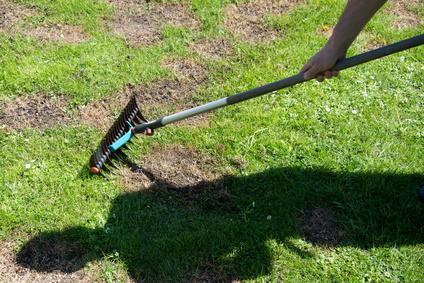 Vertikulieren mit dem rechen,  die  richtige Rasenpflege im Frühjahr machen