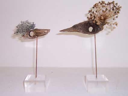 Fundevögel
