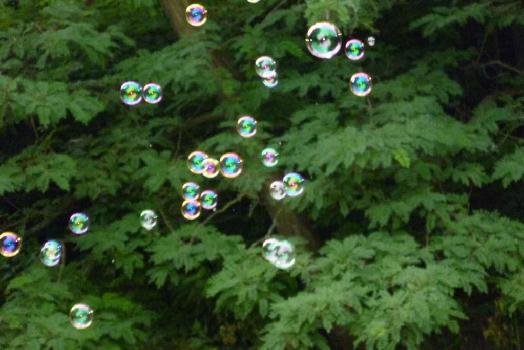 Seifenblasen über der Panke © Diana Schaal