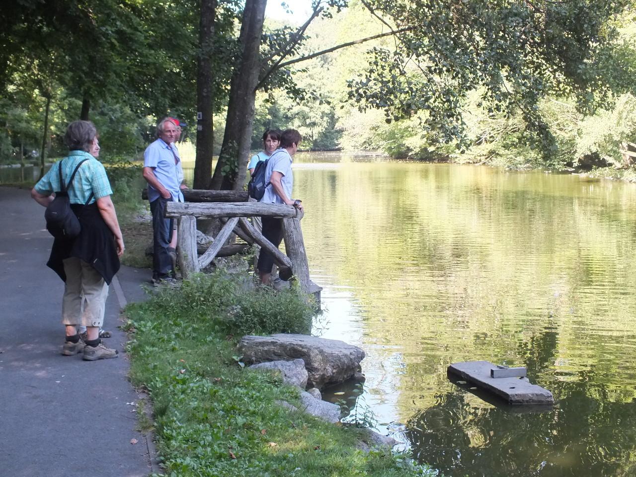 Fasanerie & Lufthof - 09.09.12 - schon gewusst? Es gibt einen See in der Fasanerie!