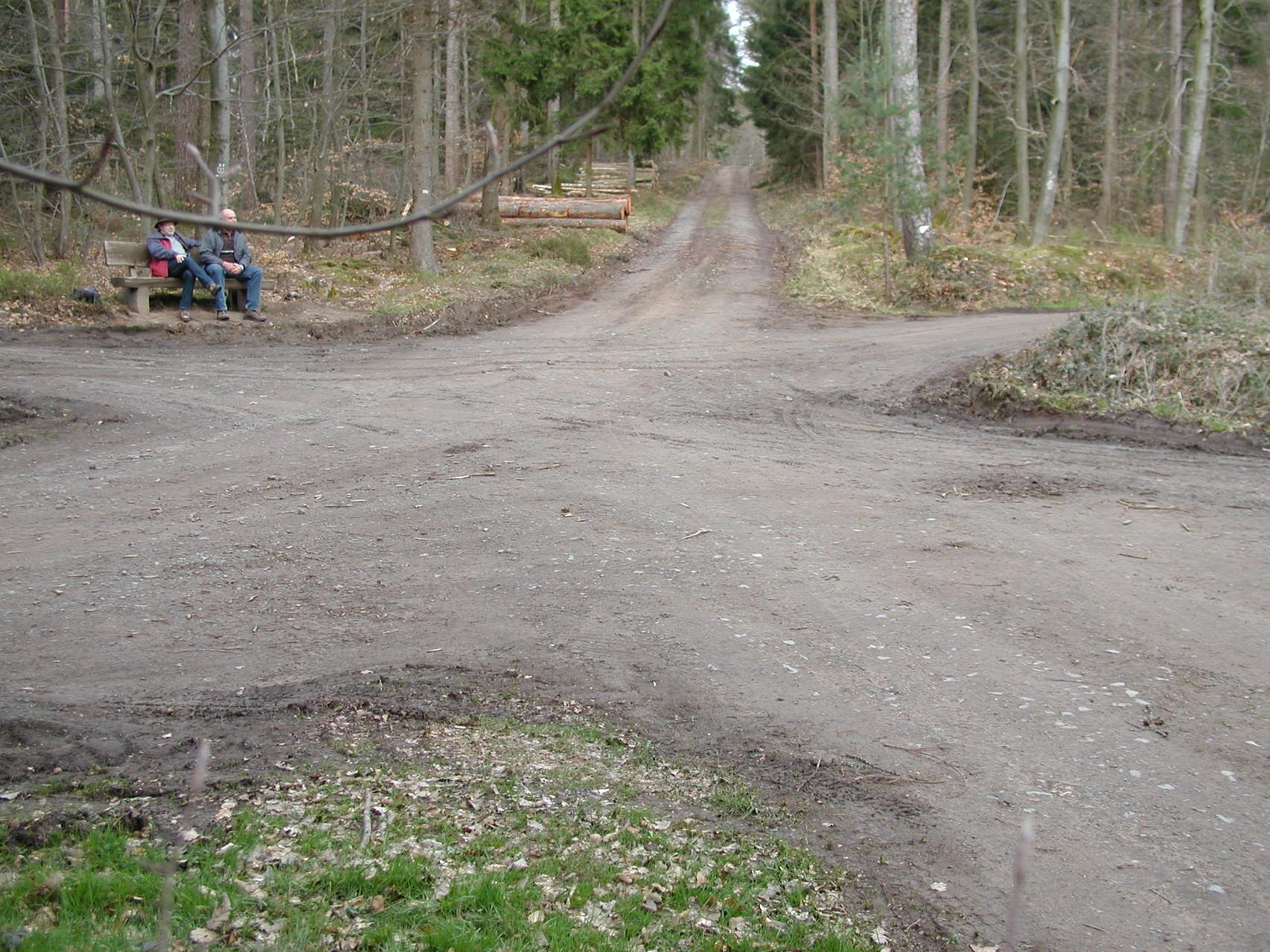 Wanderung zum Sophienhof Raibreitenbach am 23.03.14 -viele Wege führen nach ... überallhin :-)