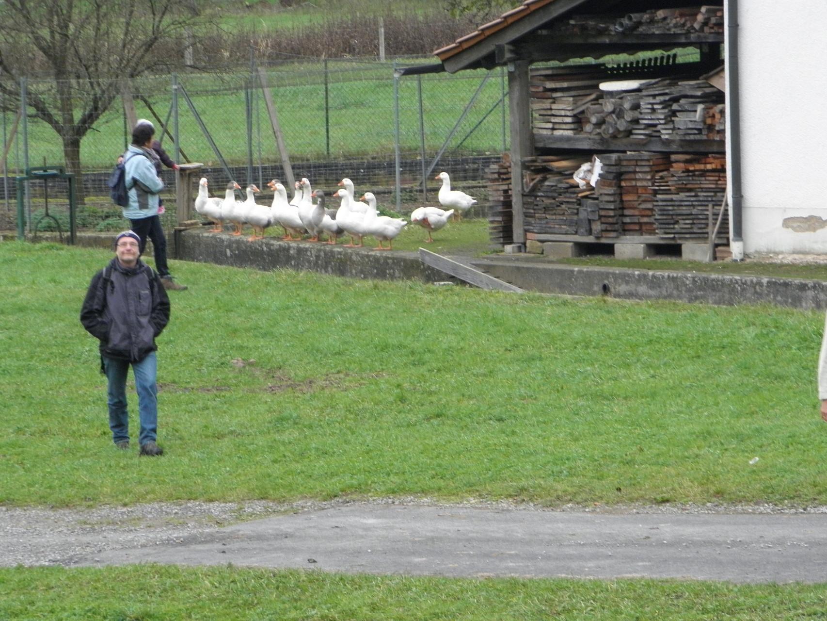 Mühlenwanderung Schollbrunn