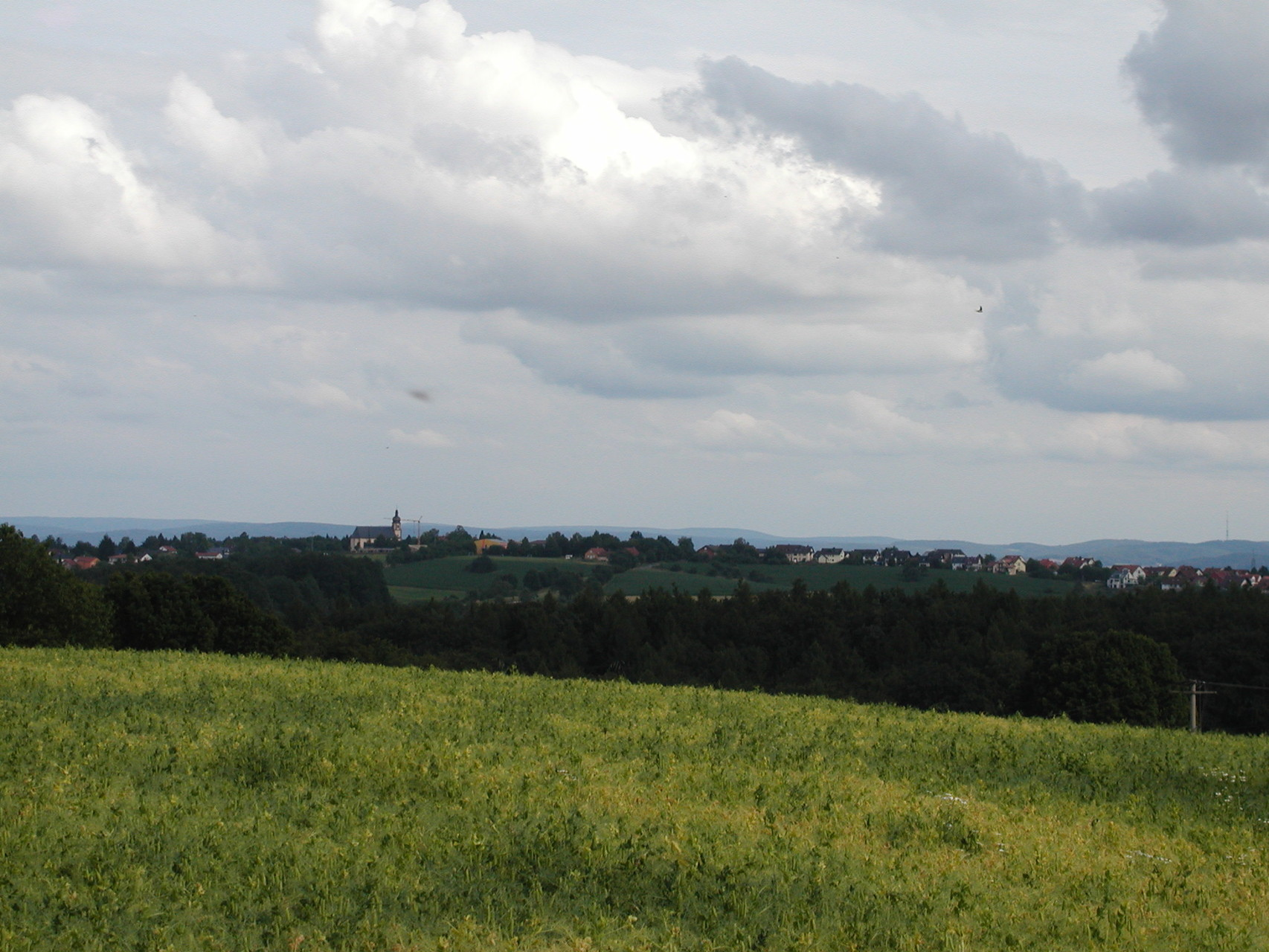 Rundwanderung Johannesberg 20.07.14