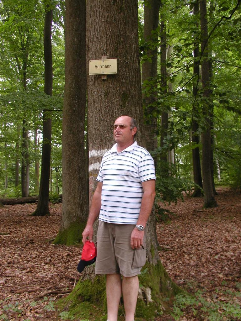 Waldmichelbach Juni 2012