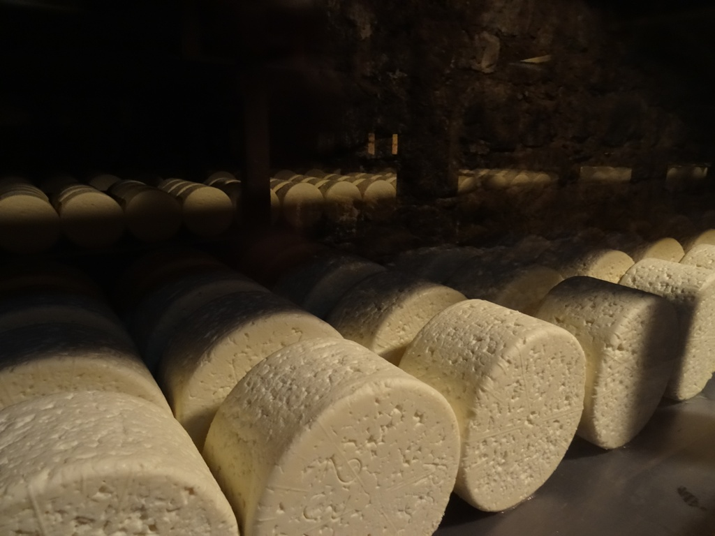 Les caves de Roquefort à 1h45 du gîte
