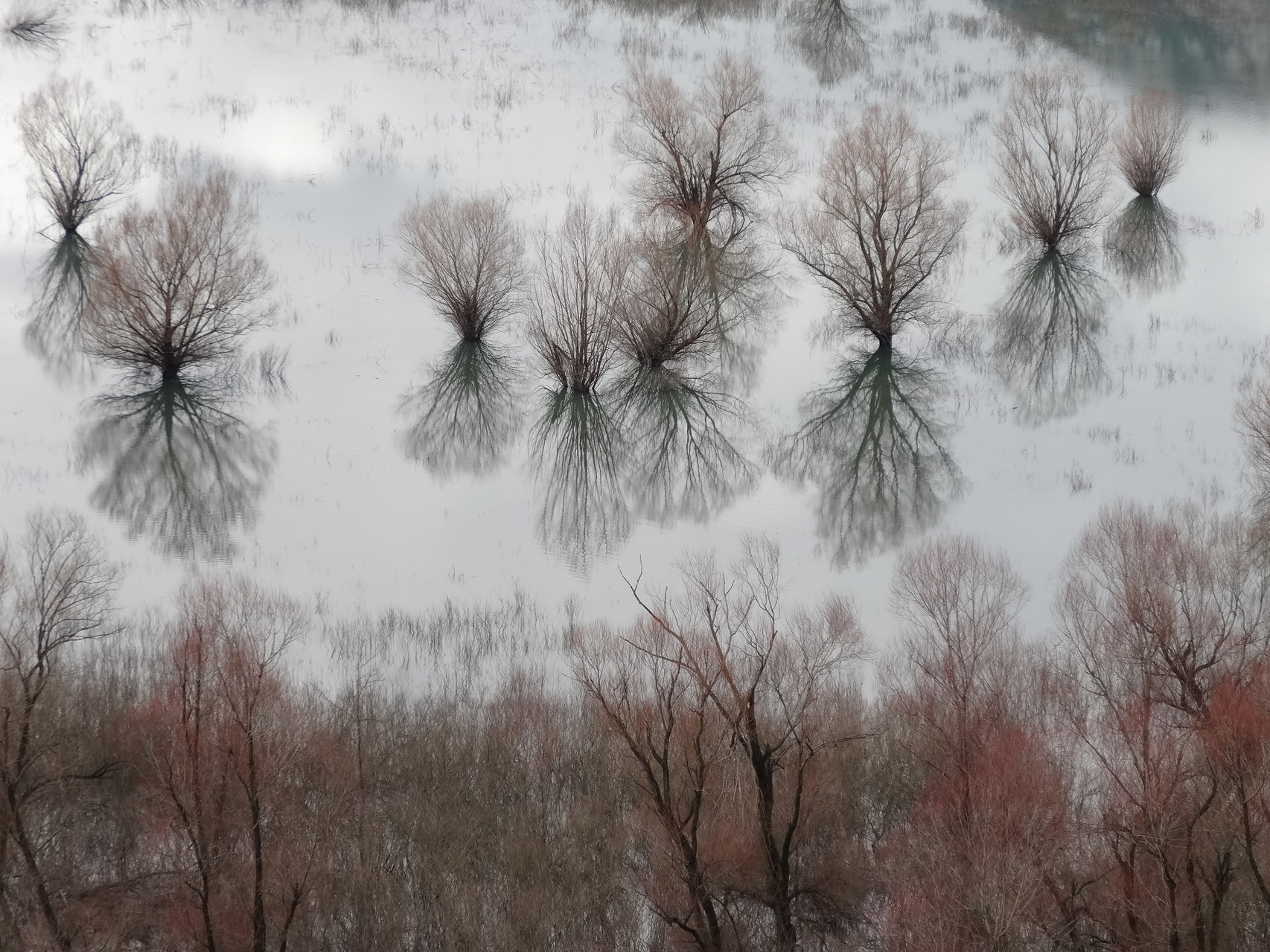 Miroir inondé