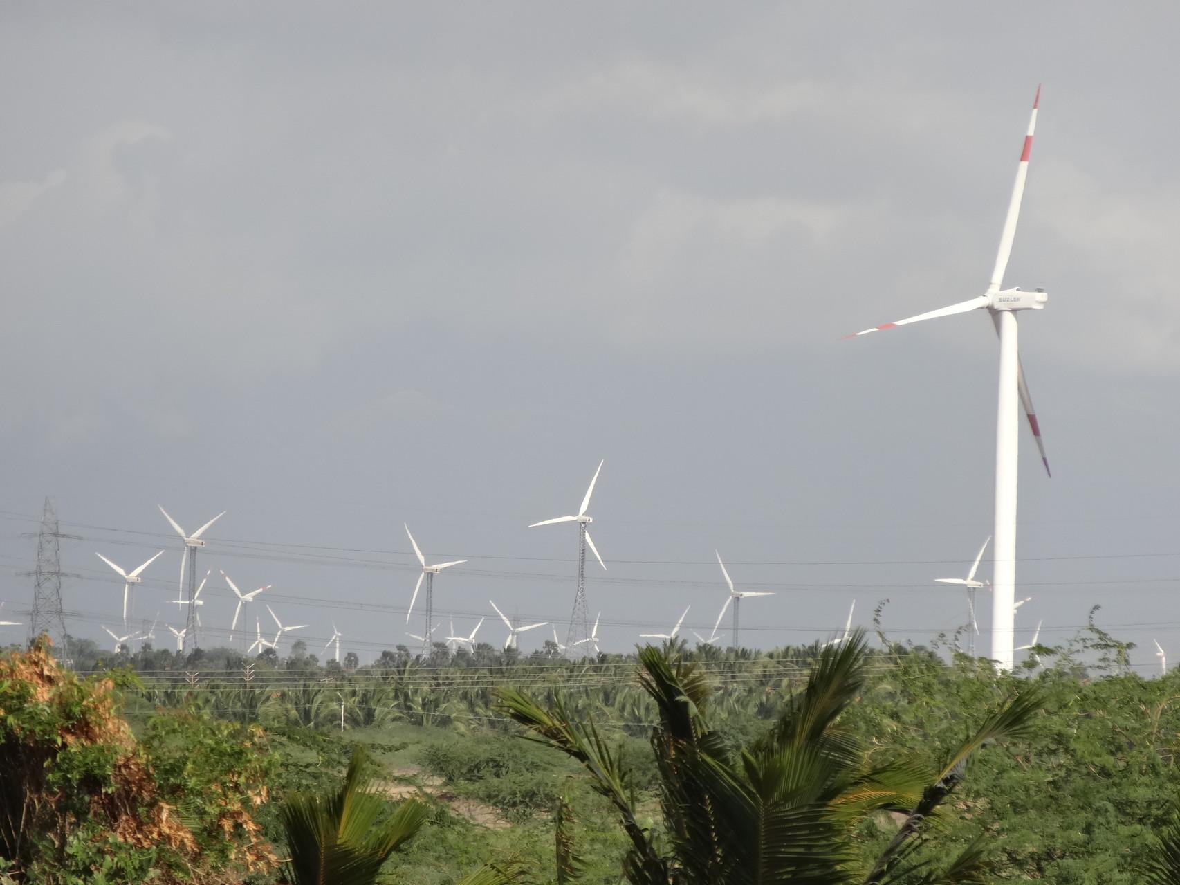 A la pointe sud, ça souffle! Plus de 10 000 éoliennes!