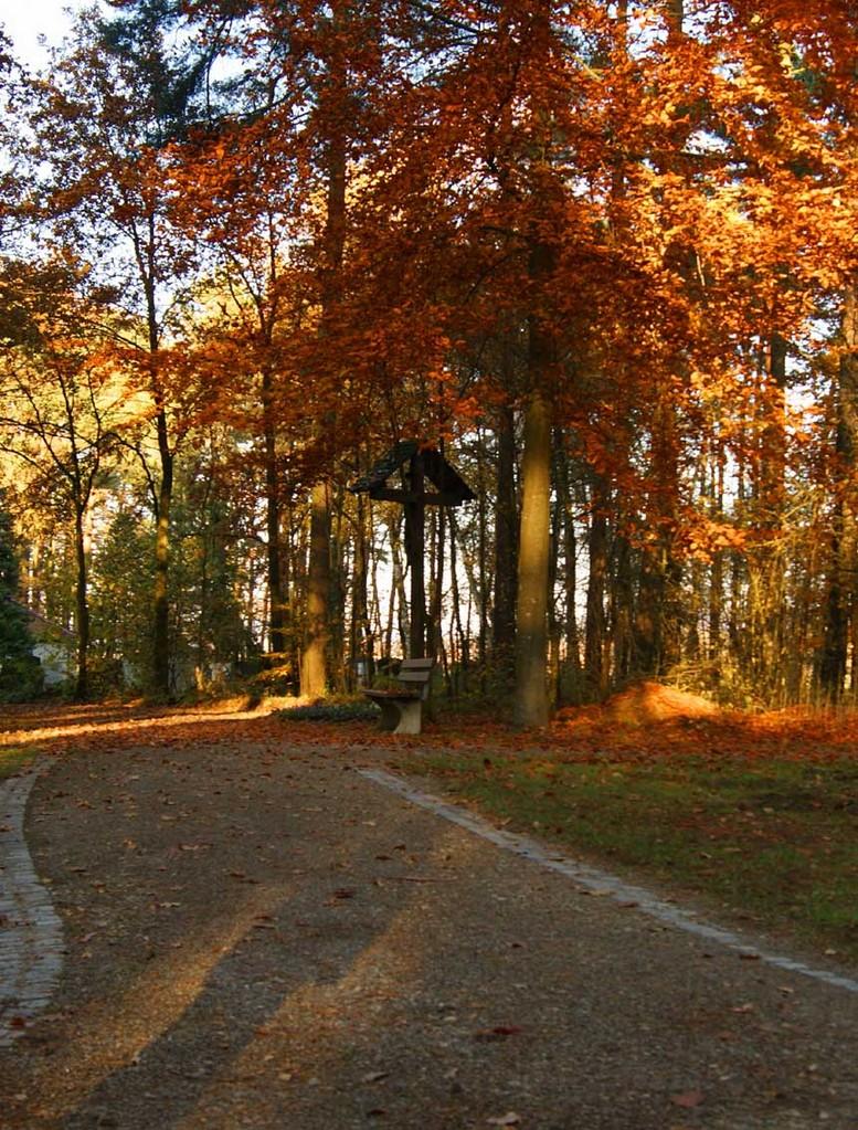 Staufer Waldfriedhof Oktober 2012