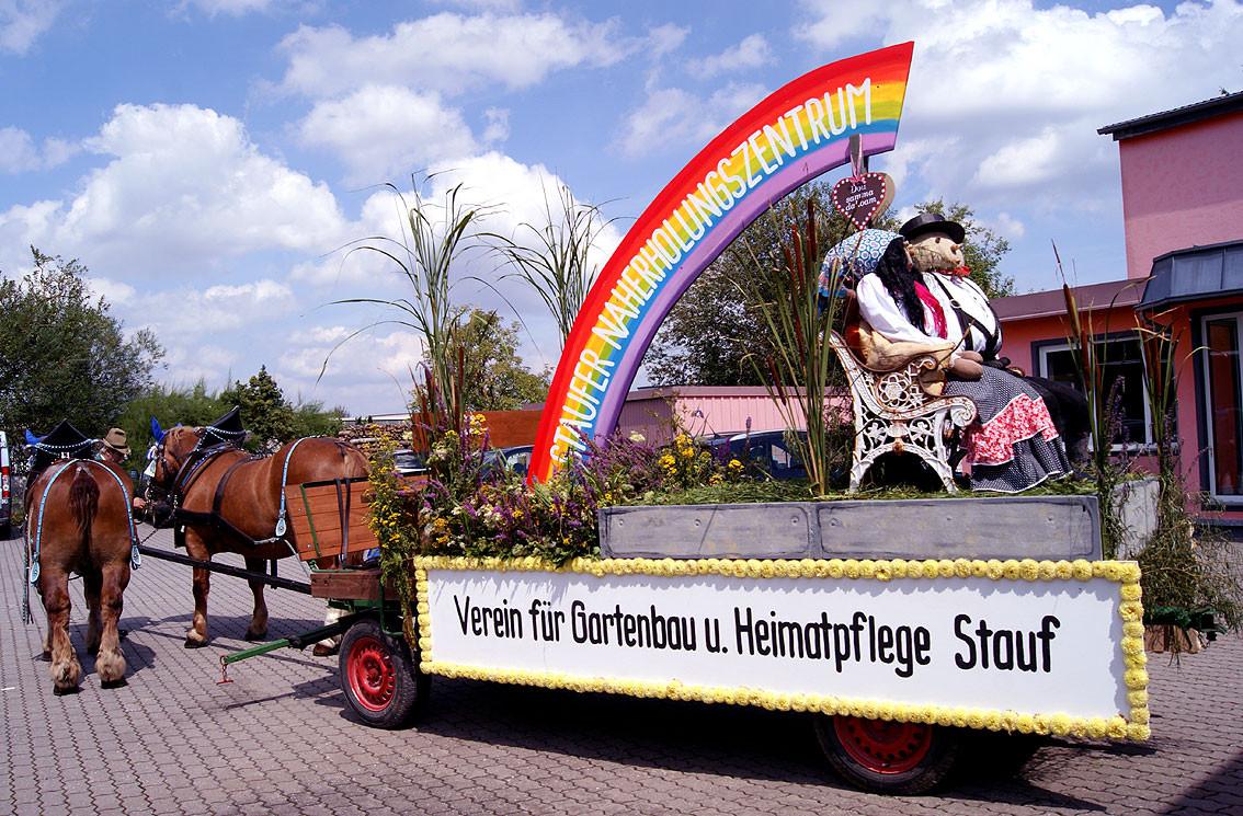 Sonntag: die Pferde werden vor den wagen gespannt