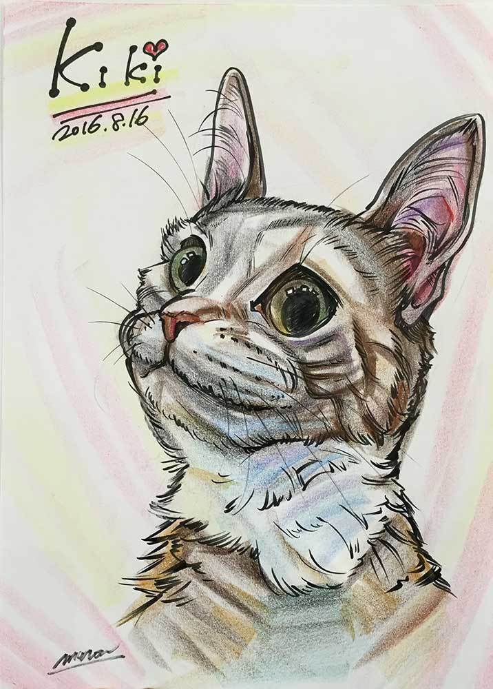 ペットの猫ちゃんをお描きしたお客様