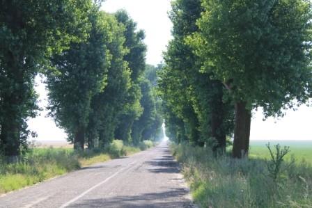 Strasse in Rumänien