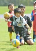 JFAキッズ(U-6)サッカーフェスティバル2013 かながわ