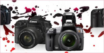 Professionelle Bilder mit Spiegelreflexkameras