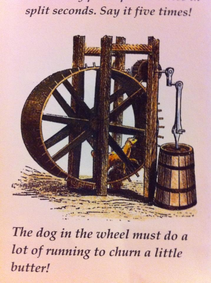 dog powered churn