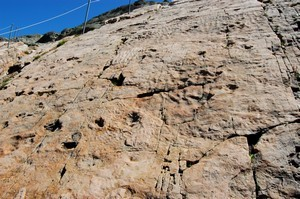 ont laissé leurs traces dans le sable maintenant fossilisé