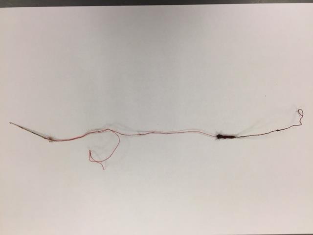 De naald met draad, er zitten wat haren aan het draaduiteinde