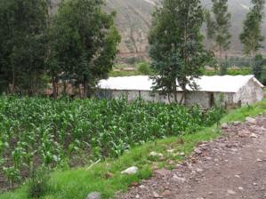 El biohuerto Educativo de la escuela pública de Vilcabamba, cerca del río que lleva el mismo nombre (Cusco - Perú)