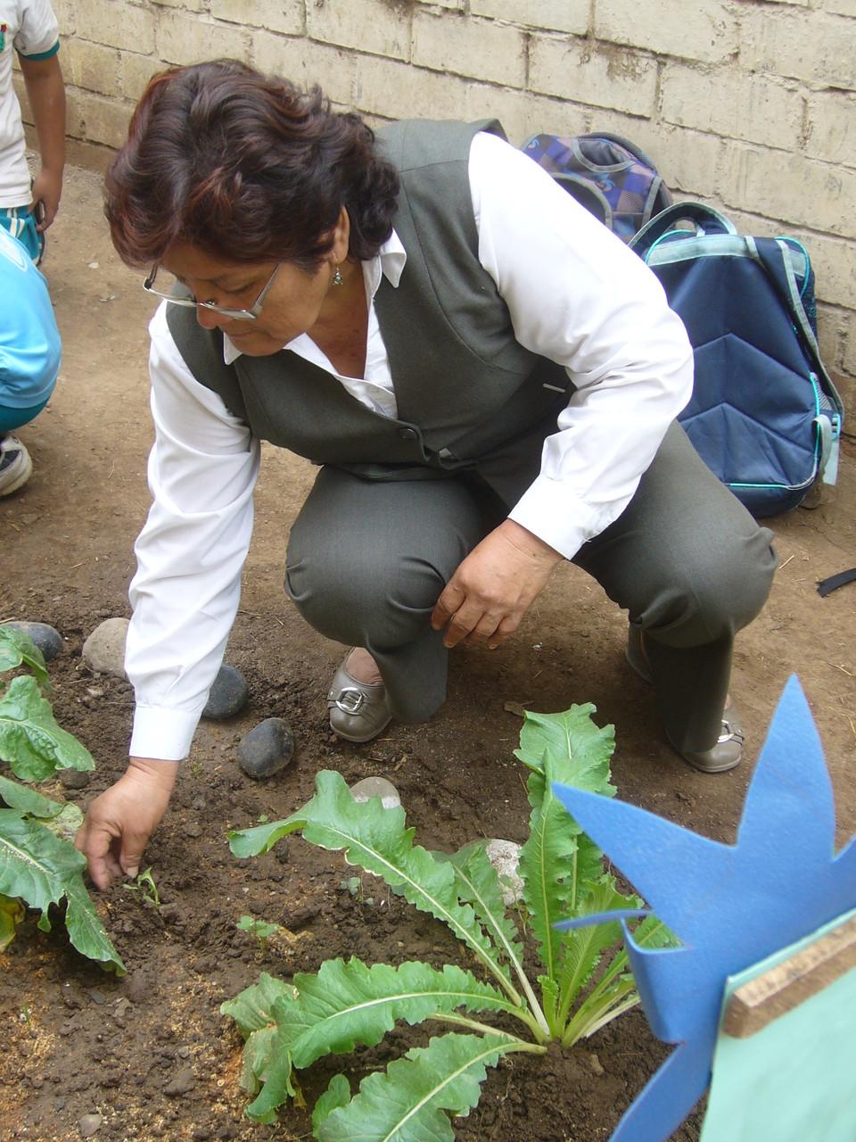 3ºB - Profesora Teresa LLangue Vasquez