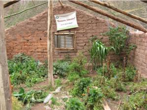 Vista desde el interior del invernadero del Biohuerto Educativo de la escuela pública de Caicay (Cusco - Perú)