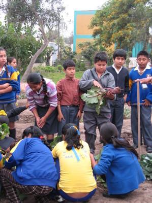 El Biohuerto Educativo al servicio de una nueva ética (Lima - Perú)