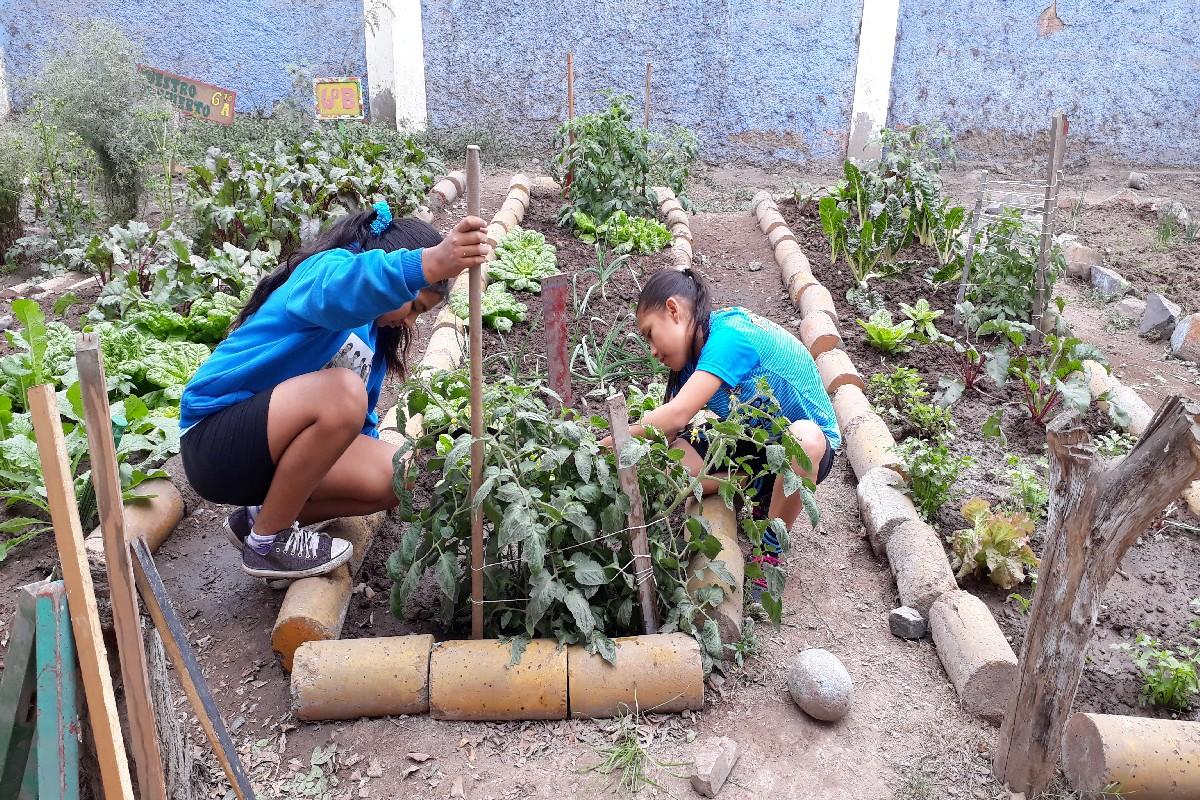 28 Septiembre - Actividades en el Biohuerto
