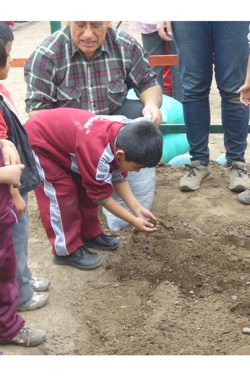 Escuchan y observan como añadir nutrientes al suelo.