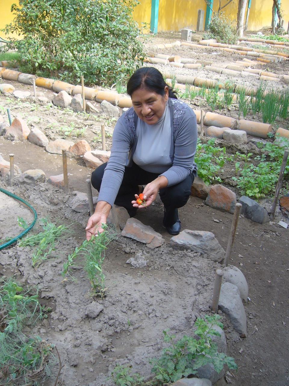 Prof. Doña María Huaman con los guisantes (arvejas)
