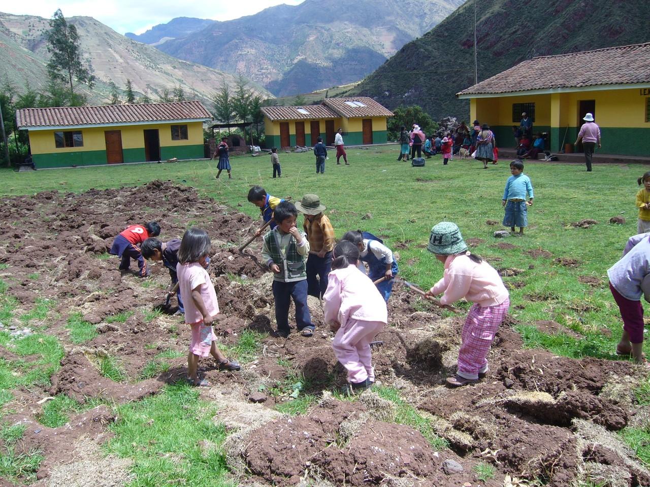 © Econtinuidad Perú