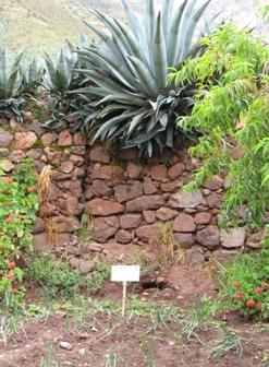 Biohuerto Educartivo al aire libre de la escuela de la comunidad de Pacor (Cusco - Perú)