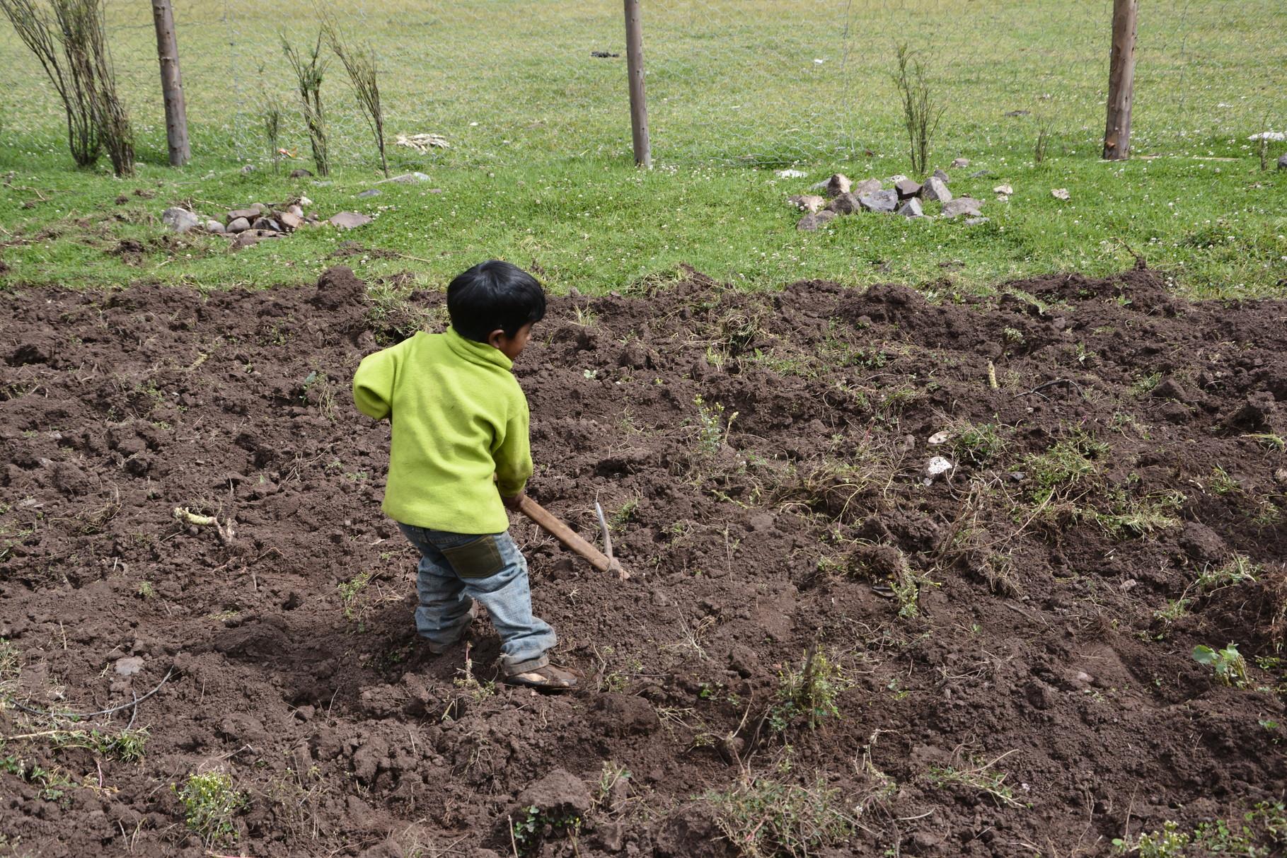 23 Mayo – Vicente uno de los niños más pequeños acompaña al equipo en la labor