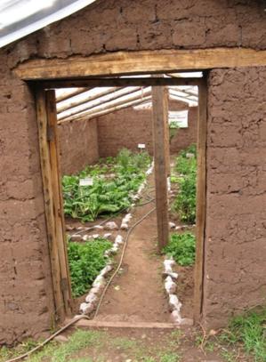 El Biohuerto Educativo de la localidad de Pacor nos invita a penetrar en su interior (Cusco - Perú)