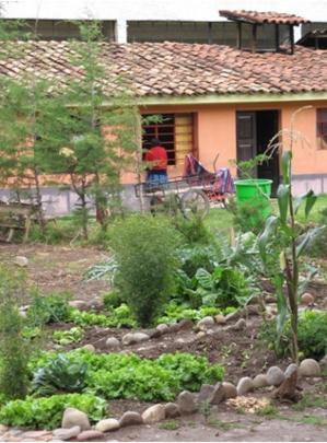 Otra vista del Biohuerto Educativo de la escuela pública de Coya con sus parcelas asignadas al cultivo del maíz, lechuga, col... (Cusco - Perú)