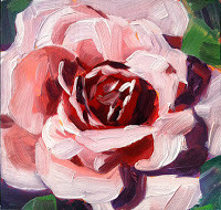 "Pink Blush, Oil on masonite, 6x6"", SOLD"
