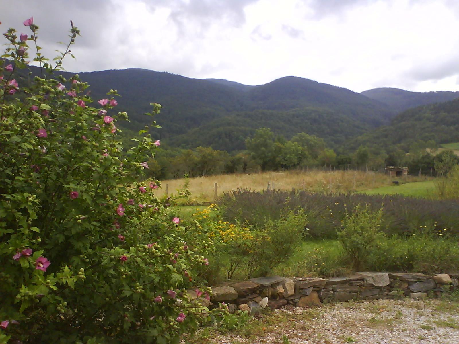 panorama sur la montagne Noire