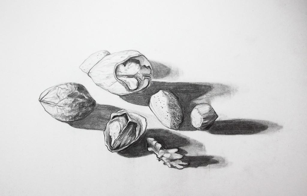 Nüsslein (Zeichenpapier, 21x29cm)
