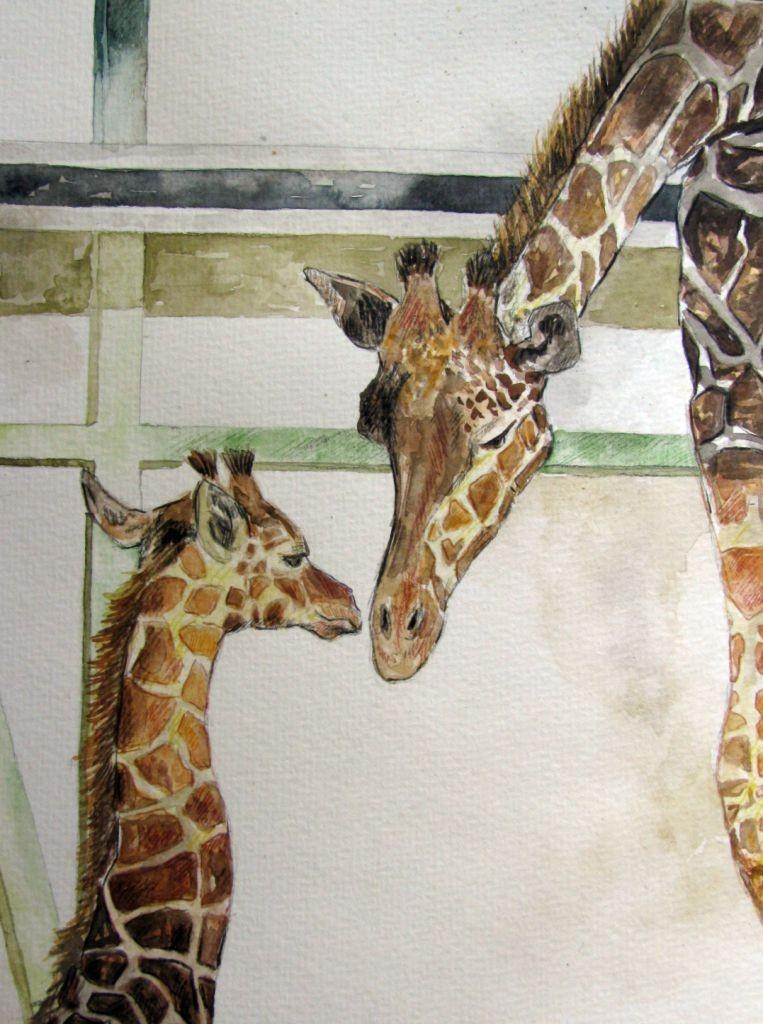 Giraffen (Aquarellpapier, 17x24cm)