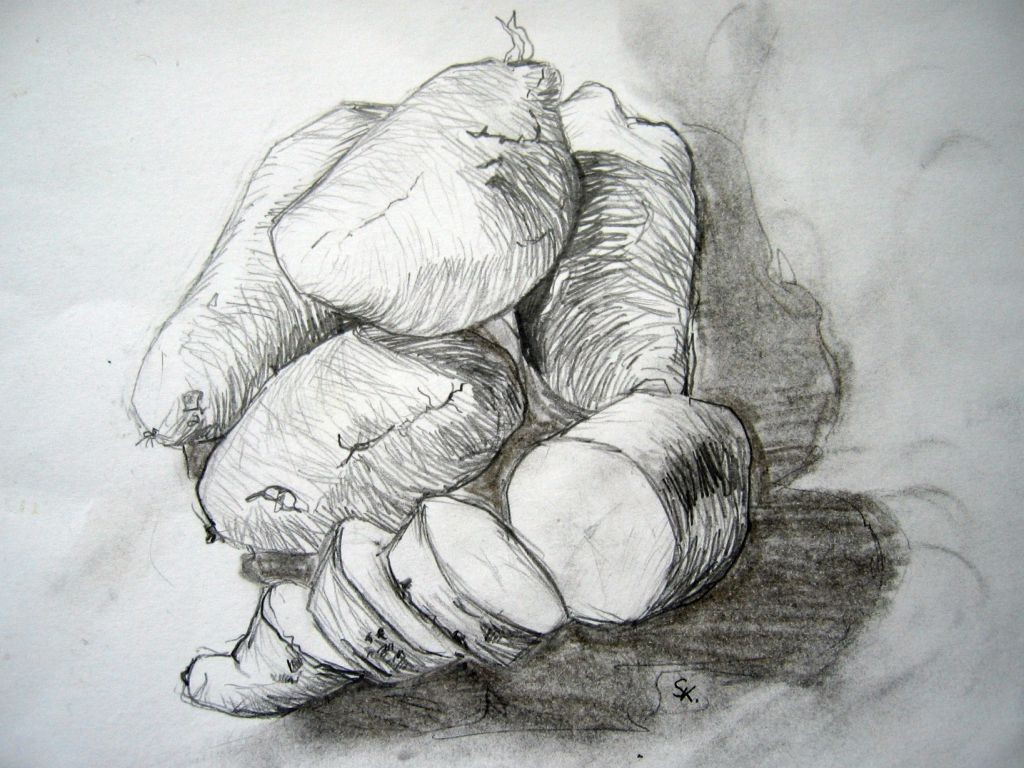 Kartoffel (Zeichenpapier, 21x29cm)