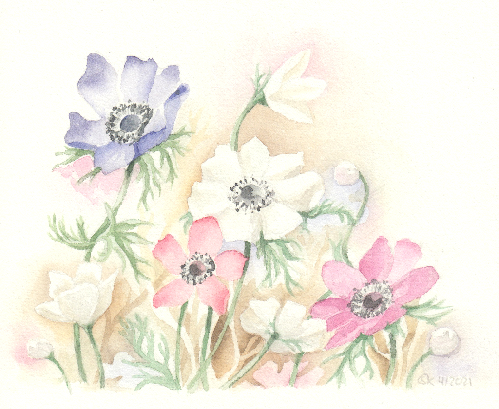 Anemonen (Aquarellpapier, 15x21 cm)