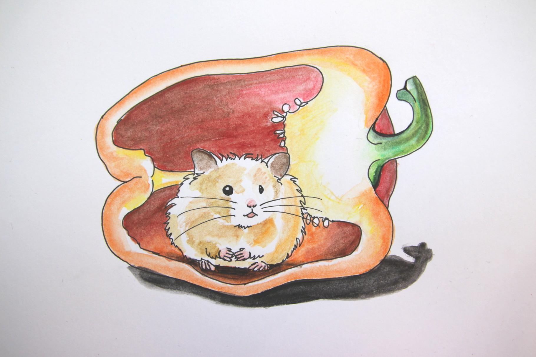 Hamster in der Paprika (Zeichenpapier, 10x13cm)