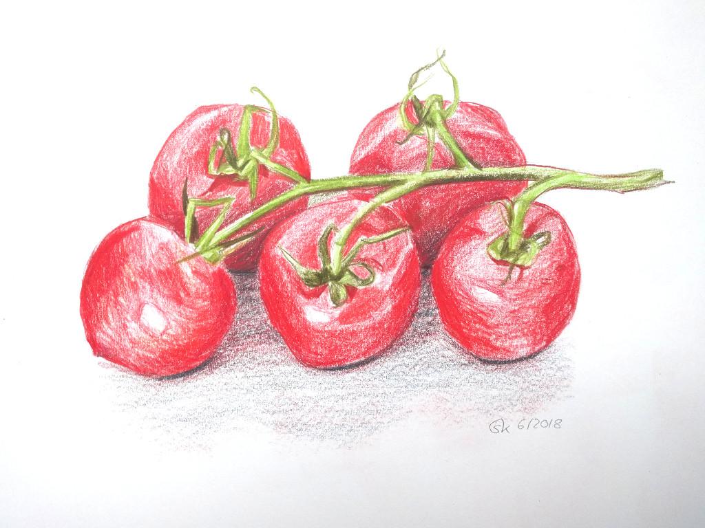 Tomaten (Skizzenblock, 30x40cm)
