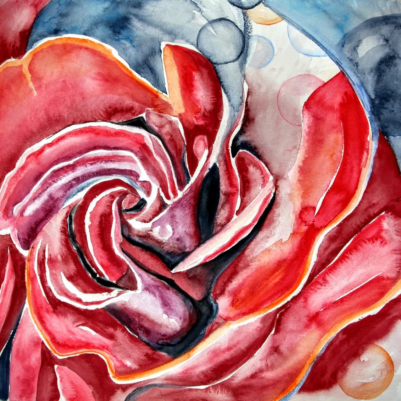 Rote Rose (Aquarellkarton, 40x40cm)