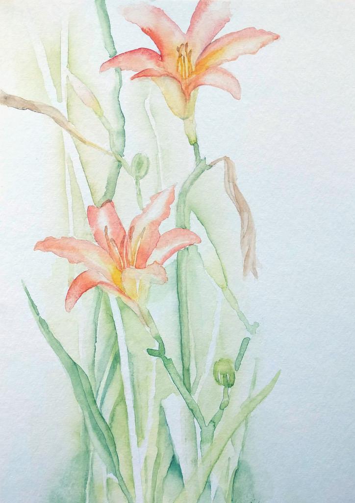 Lilie im Rosengarten (Aquarellpapier, 17x24cm)