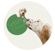 Setter Dinner - gesundes, nachhaltiges Hundefutter