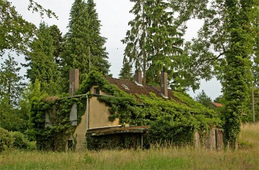 Maison d'ouvrier pittoresque à Steinkrug